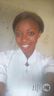 Qualified Healthcare Workers and Nurses   Healthcare & Nursing CVs for sale in Abuja (FCT) State, Lugbe District