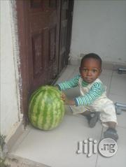 Seedless Sugar Baby Watermelon | Meals & Drinks for sale in Abuja (FCT) State, Kubwa