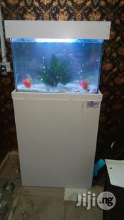 Ready Made Aquariums for Home and Office | Fish for sale in Lagos State, Egbe Idimu