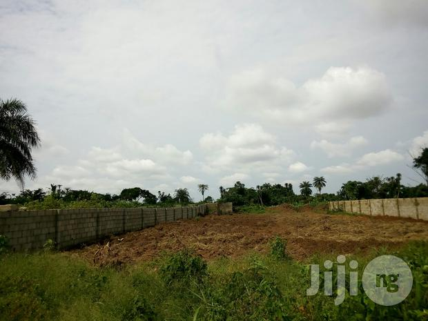 One Plot of Land, Registerd and Surveyed in Owerri Town for Sale