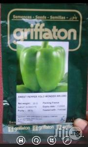 Hybrid Green Pepper Seeds For Sale | Feeds, Supplements & Seeds for sale in Delta State, Warri South-West