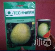 Hybrid Watermelon Seed For Sale | Feeds, Supplements & Seeds for sale in Delta State, Warri South-West