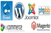 Practical Web Development Training Plus Mobile Apps | Classes & Courses for sale in Lagos State, Magodo