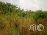 40 Acres Of Land Opposite Peace City Estate For Sale | Land & Plots For Sale for sale in Lagos State, Lekki Phase 1