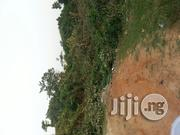 Acres of Land for Sales at Akio Community Around Agbowa Area | Land & Plots For Sale for sale in Lagos State, Ikorodu