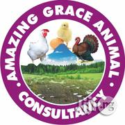 Amazing Grace Animal Consultancy | Pet Services for sale in Oyo State, Egbeda