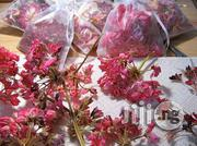 Dried Geranium Flower Organic Herbs and Spices | Vitamins & Supplements for sale in Plateau State, Jos South