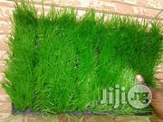Decorative Green Turf For Sale | Landscaping & Gardening Services for sale in Lagos State, Ikeja