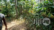 Farm Land | Land & Plots For Sale for sale in Ogun State, Odeda