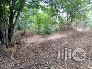30 Acres At Oloro Village Ilora Oyo | Land & Plots For Sale for sale in Oyo State, Afijio