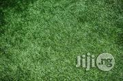 Good Quality Fairly Used Grass On Bethelmendels | Garden for sale in Lagos State, Ikeja