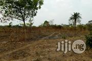 12 Acres Farm Land For Rent At Okaka Town Saki Express Road | Land & Plots for Rent for sale in Oyo State, Itesiwaju