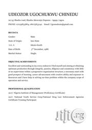 Internship Cv | Internship CVs for sale in Imo State