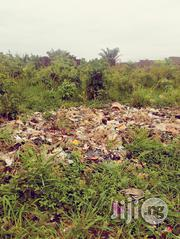Half Plot of Land at Ayobo Isefun Close to Main Road Good for All Purpose | Land & Plots For Sale for sale in Lagos State, Alimosho