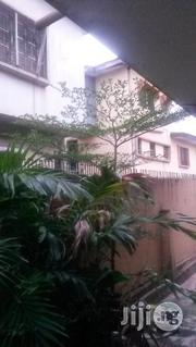 10 Feet Step Tree | Garden for sale in Oyo State, Ibadan