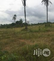20 Acres Of Land At Adebunmi Village Alekuru Area Alabata Moniya Ibada | Land & Plots For Sale for sale in Oyo State, Akinyele