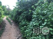 Affordable Plots Of Land At Aba Opa Area Alabata Moniya Ibadan | Land & Plots For Sale for sale in Oyo State, Akinyele