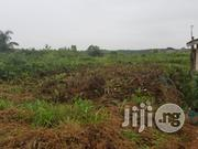 Full Plot With Global C of O at Arepo | Land & Plots For Sale for sale in Ogun State, Ifo