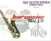 Musician. High Life And Juju | Arts & Entertainment CVs for sale in Ondo State, Akure South