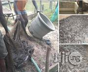 Solutions To Issues In Aquaculture | Fish for sale in Abuja (FCT) State, Dutse