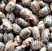 Castor Seeds Organic | Feeds, Supplements & Seeds for sale in Plateau State, Jos