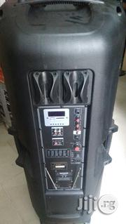 """Double 15"""" Public Address 