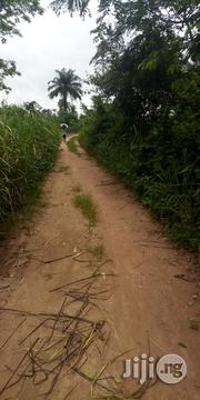 4acres Of Land For Sale At Iroko Village Off Oyo Road | Land & Plots For Sale for sale in Oyo State, Afijio