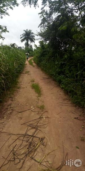 4acres Of Land For Sale At Iroko Village Off Oyo Road