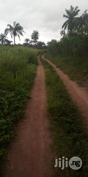 2acres of Land for Sale at Iroko via Iware | Land & Plots For Sale for sale in Oyo State, Afijio