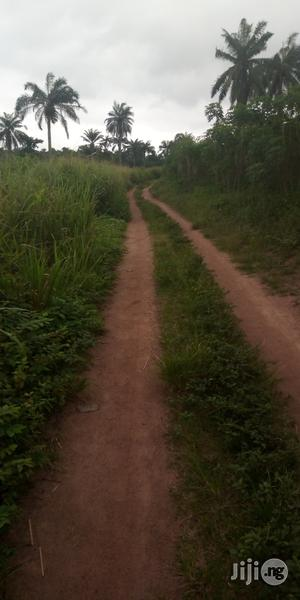 2acres of Land for Sale at Iroko via Iware