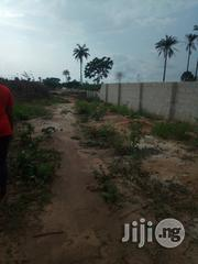 Buy Plots Of Land For Sale With An Estate Plan | Land & Plots For Sale for sale in Imo State, Owerri