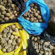 Wholesale Goron Tula Wholesale Silky Kola | Sexual Wellness for sale in Lagos State, Apapa