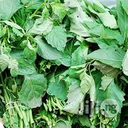 Garden Egg Leaf | Vitamins & Supplements for sale in Plateau State, Jos