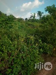 Land At Upper Ayeyemi Oke Bola Ondo, Ondo Town | Land & Plots For Sale for sale in Ondo State, Ondo West