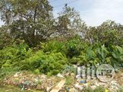 2 Plots of Land Directly on Ago Palace Way. | Land & Plots For Sale for sale in Lagos State, Isolo