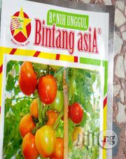 KARINA (Bintang Asia) Indeterminate Tomato | Feeds, Supplements & Seeds for sale in Delta State, Uvwie
