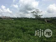 Acres of 600,000 Palm Tree With Functioning Farm at Lagun Village Iba | Land & Plots For Sale for sale in Oyo State, Egbeda