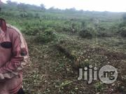 Acres Of Fertiled Farmland For Long And Short Investment At Abeokuta.   Land & Plots For Sale for sale in Ogun State, Abeokuta North