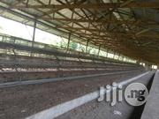Fairly Use Animal Care Battery Cage | Farm Machinery & Equipment for sale in Oyo State, Ido