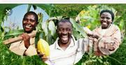 Farming And Agricultural Training | Classes & Courses for sale in Lagos State, Lagos Mainland