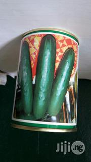 Cucumber Poinsett 100g | Feeds, Supplements & Seeds for sale in Delta State, Oshimili North