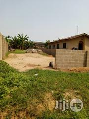 A Well Fenced 180 by 45 Virgin Land at Ikola | Land & Plots For Sale for sale in Lagos State, Alimosho