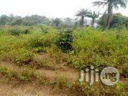 800 Acres At Araromi Idowu, Omi Adio Area, Ibadan   Land & Plots For Sale for sale in Oyo State, Akinyele