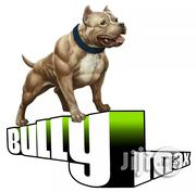 Bully Max Muscle Builder For Dog | Pet's Accessories for sale in Lagos State, Agege