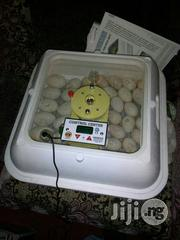 Incubator For All Eggs | Farm Machinery & Equipment for sale in Abuja (FCT) State, Kubwa