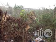 Cheap Plot of Land at Egbeda Akowonjo for Sale. | Land & Plots For Sale for sale in Lagos State, Ikeja