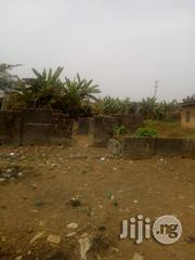 A Plot Of Land With C Of O At Ayobo | Land & Plots For Sale for sale in Lagos State, Alimosho