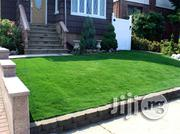 Artificial Grass Used To Creates A Friendly And Relaxed Ambiance | Garden for sale in Lagos State, Ikeja