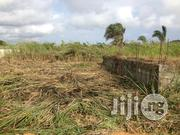 1 Acre Commercial Land Along Iwo/Ibadan Road With C of O | Land & Plots For Sale for sale in Oyo State, Egbeda