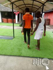 Become An Independent Marketer Reselling Artificial Grass.   Advertising & Marketing Jobs for sale in Lagos State, Ikeja
